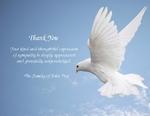 Dove-Phrase 4