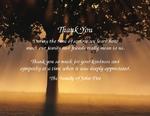 Tree Rays-Phrase 2