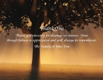 Tree Rays-Phrase 3