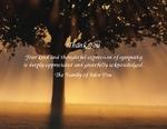 Tree Rays-Phrase 4