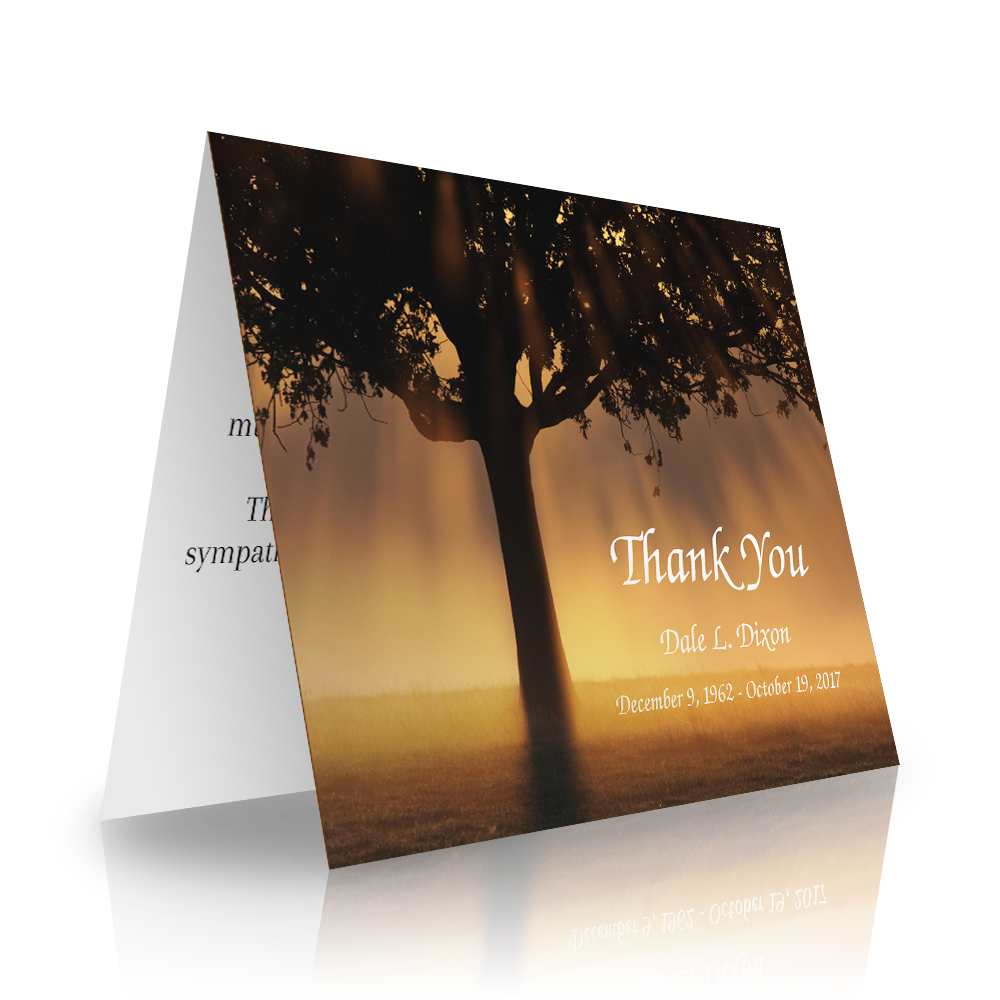 Tree Rays Folded Sympathy Thank You Cards